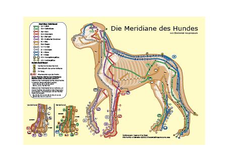 Hundemeridiane 1
