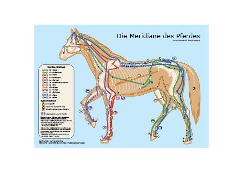 Die Pferdemeridiane 1
