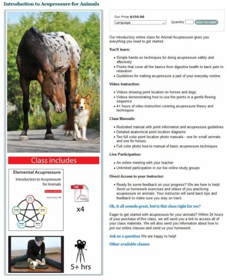 Introduction to Acupressure for Animals 1
