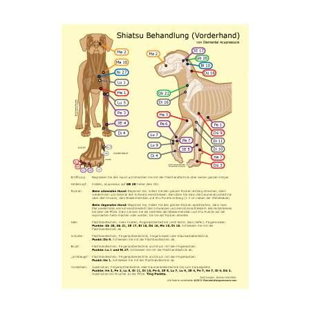 Shiatsu-Routine für Hunde 2