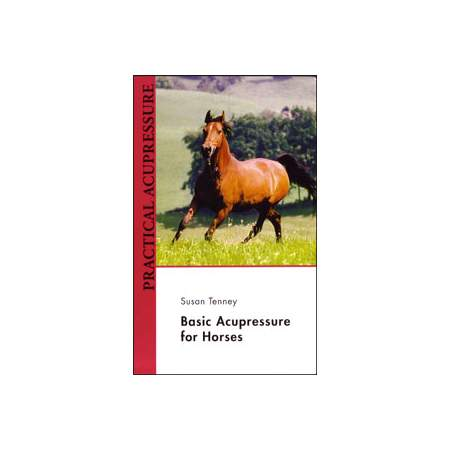 Basic Acupressure for Horses 1