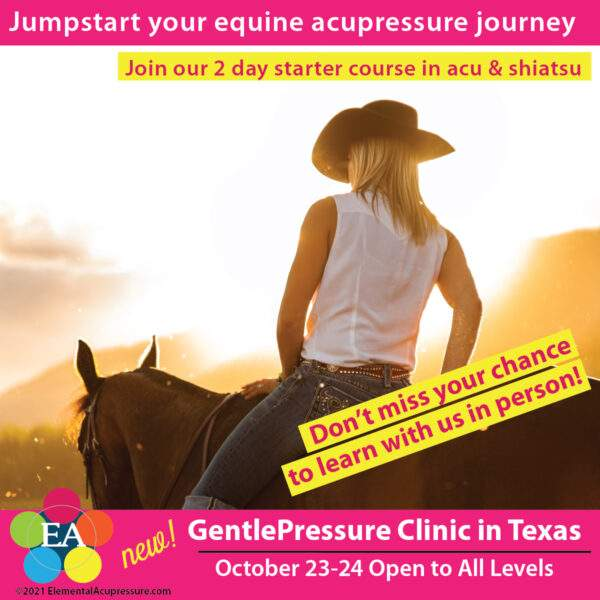 GentlePressure™ Basic - Texas 2021 1